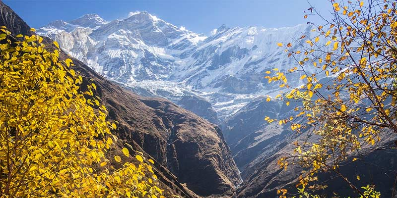 Annapurna Base Camp is the main resource for scenic beauty of Nepal.