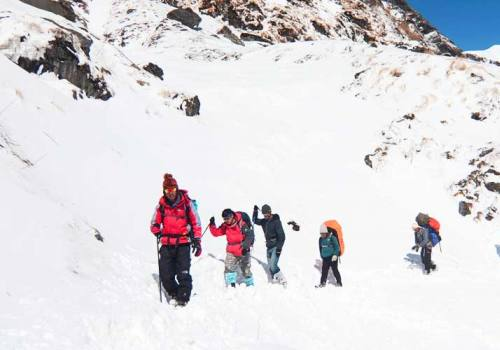 Steps to Choose the Best Trekking and Tour Agencies in Nepal