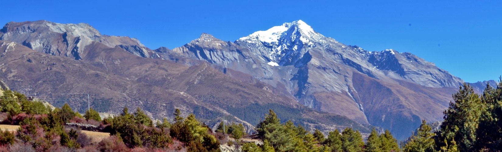 Among the peaks of Annapurana region, Pisang Peak is most popular among peak climbers. The hanging glaciers in the western part of the mountains are very challenging. The huge rock slabs at the western end makes the trip difficult for climbers.